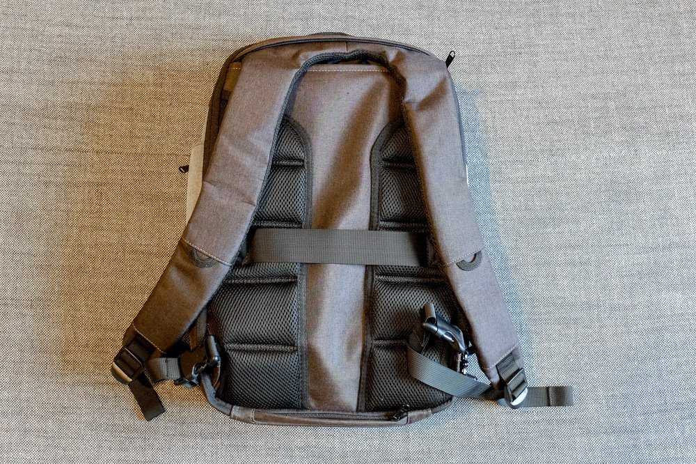 Standard Luggage Daily Backpack - from behind