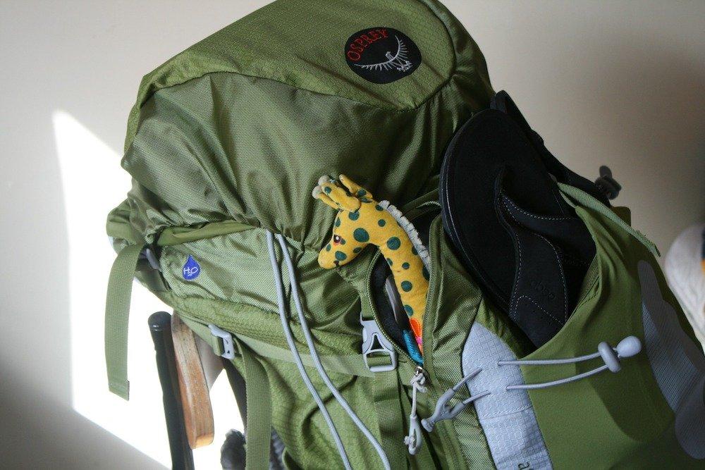 Green Osprey backpack